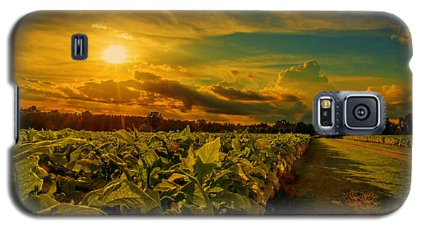 Sunset In A North Carolina Tobacco Field  Galaxy S5 Case by John Harding