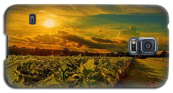 Sunset In A North Carolina Tobacco Field  Galaxy S5 Case