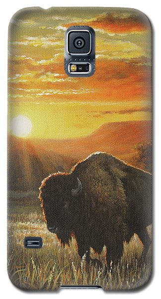 Sunset In Bison Country Galaxy S5 Case by Kim Lockman