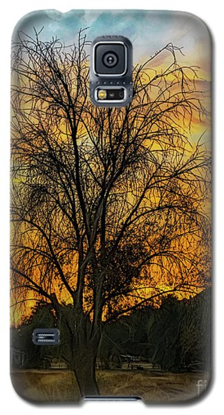 Sunset In Perris Galaxy S5 Case