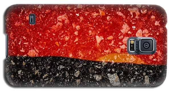 Sunset In Stone Galaxy S5 Case