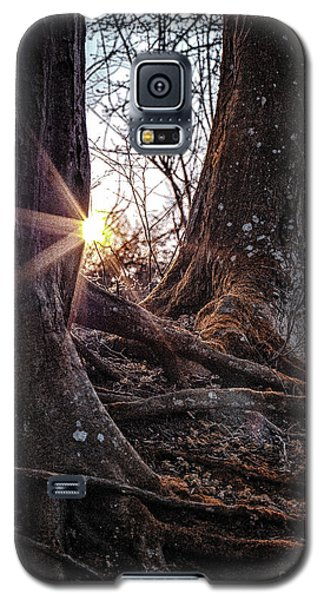 Sunset In The Woods Galaxy S5 Case
