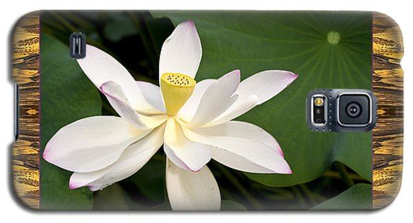 Galaxy S5 Case featuring the photograph Sunset Lotus by Bell And Todd