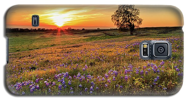 Sunset On North Table Mountain Galaxy S5 Case