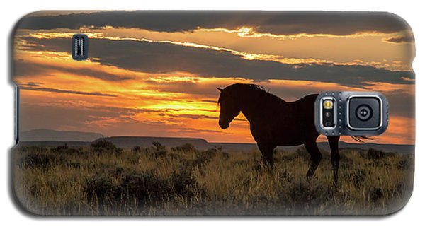 Sunset On The Mustang Galaxy S5 Case by Jack Bell
