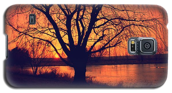 Sunset On Willow Pond Galaxy S5 Case