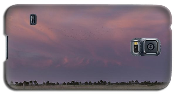 Sunset Over The Wetlands Galaxy S5 Case