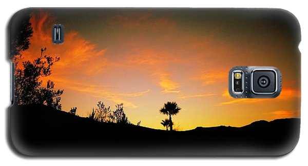Sunset - Palm Mountain Galaxy S5 Case by Guy Hoffman