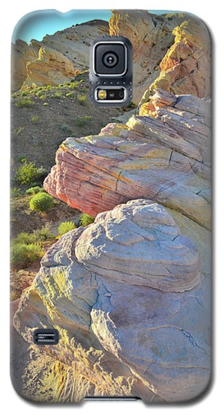 Sunset Pastels In Valley Of Fire Galaxy S5 Case