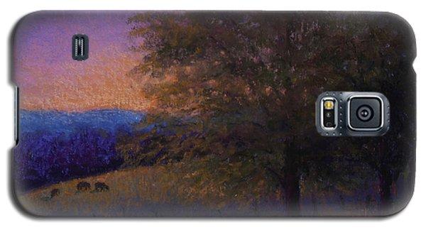 Sunset Pasture Galaxy S5 Case