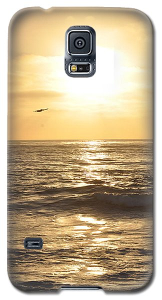 Sunset Pelican Silhouette Galaxy S5 Case