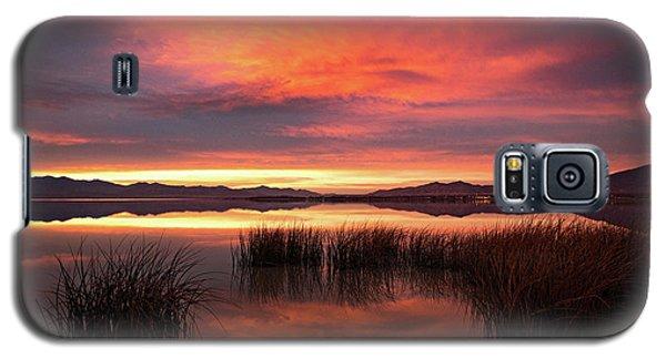 Sunset Reeds On Utah Lake Galaxy S5 Case