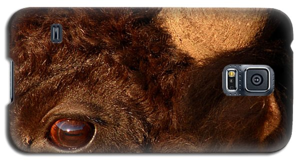 Sunset Reflections In The Eye Of A Buffalo Galaxy S5 Case by Max Allen