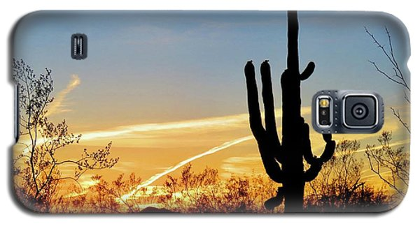 Sunset Saguaro In The Spring Galaxy S5 Case