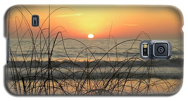 Sunset Sea Grass Galaxy S5 Case