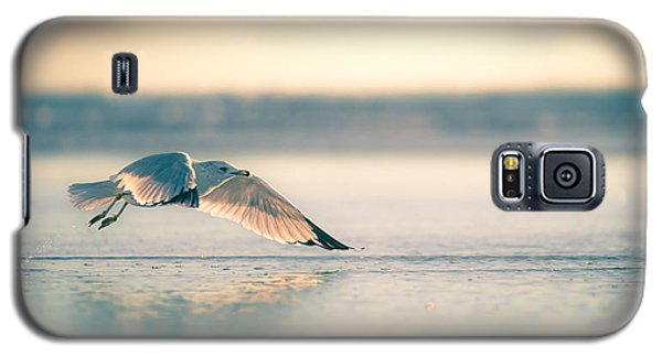 Sunset Seagull Takeoffs Galaxy S5 Case