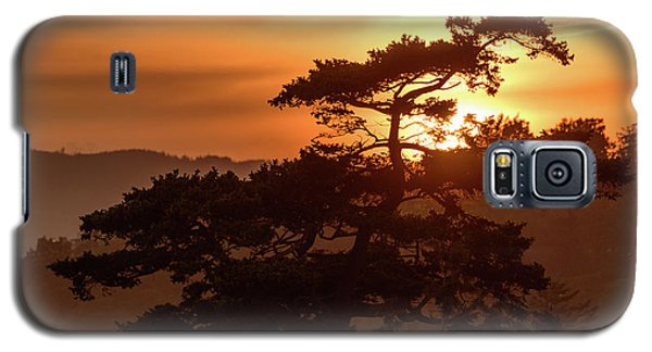 Sunset Silhouette Galaxy S5 Case