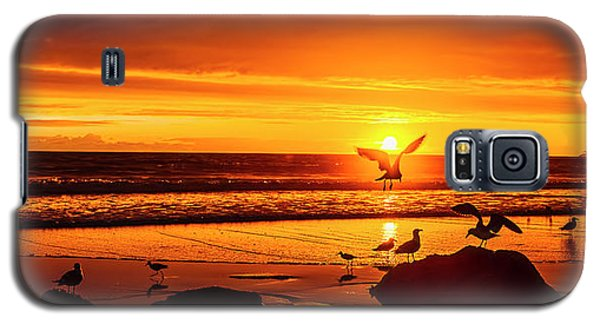 Sunset Surprise Pano Galaxy S5 Case