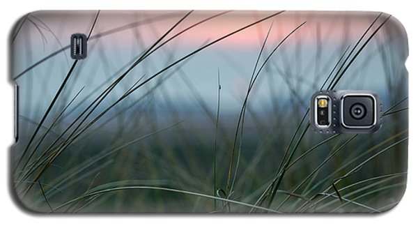 Sunset  Through The Marsh Grass Galaxy S5 Case by Spikey Mouse Photography