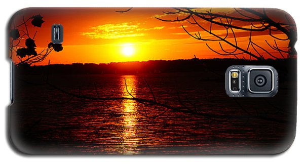 Sunset Through The Trees Galaxy S5 Case