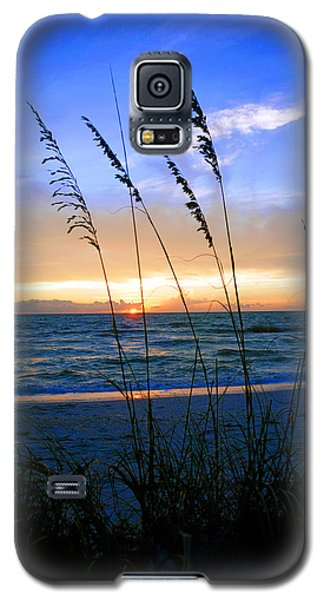 Sunset Thru The Sea Oats At Delnor Wiggins Galaxy S5 Case