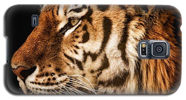 Sunset Tiger Galaxy S5 Case