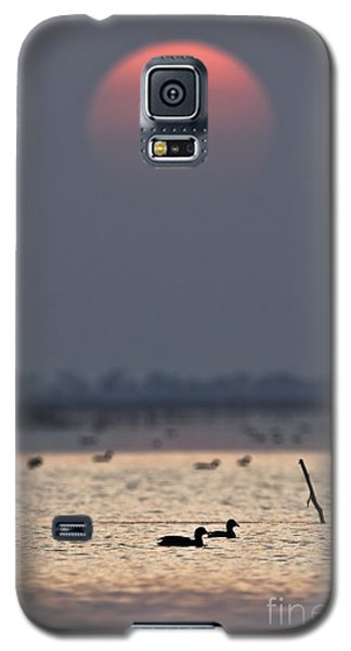 Sunset With Coots Galaxy S5 Case