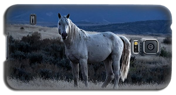 Sunset With Wild Stallion Tripod In Sand Wash Basin Galaxy S5 Case
