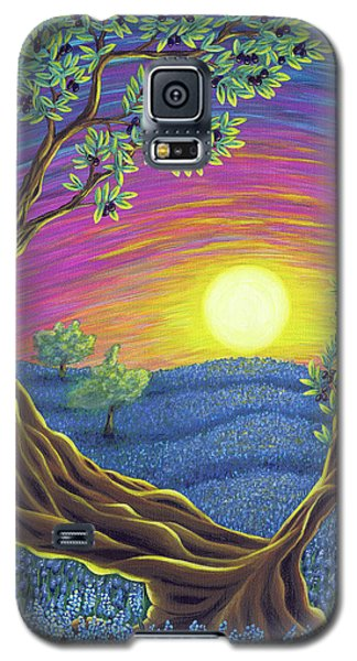 Sunsets Gift Galaxy S5 Case