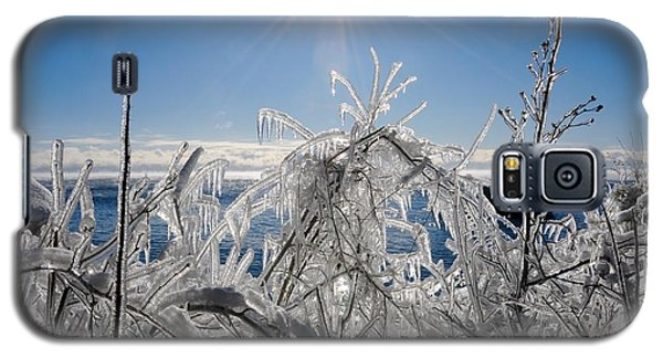 Sunshine And Ice Galaxy S5 Case by Sandra Updyke