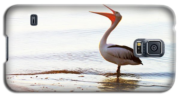 Sunshine Coast Pelican Galaxy S5 Case