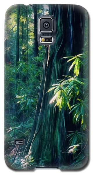 Sunshine In The Forest Galaxy S5 Case