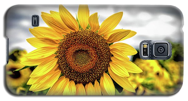 Sunshine Galaxy S5 Case