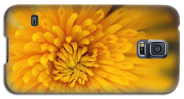 Sunshine Mum Galaxy S5 Case by Kathy M Krause
