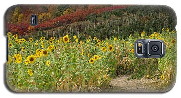 Sunshine Valley Galaxy S5 Case by Linda Mishler