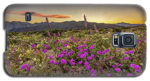 Galaxy S5 Case featuring the photograph Super Bloom Sunset by Peter Tellone