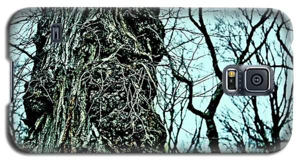 Galaxy S5 Case featuring the photograph Super Tree by Sandy Moulder