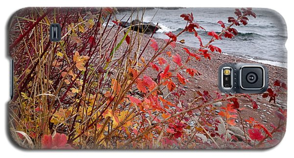 Superior November Color Galaxy S5 Case by Sandra Updyke