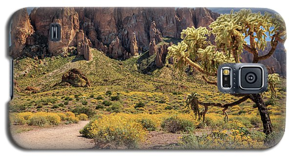 Superstition Mountain Cholla Galaxy S5 Case