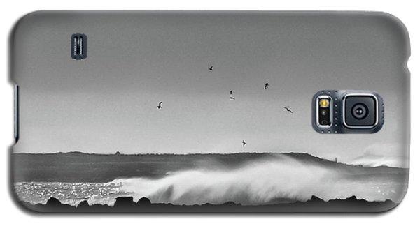 Surf Birds Galaxy S5 Case