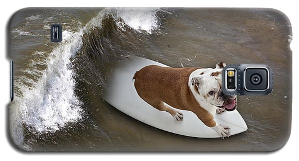 Galaxy S5 Case featuring the photograph Surfer Dog by John A Rodriguez