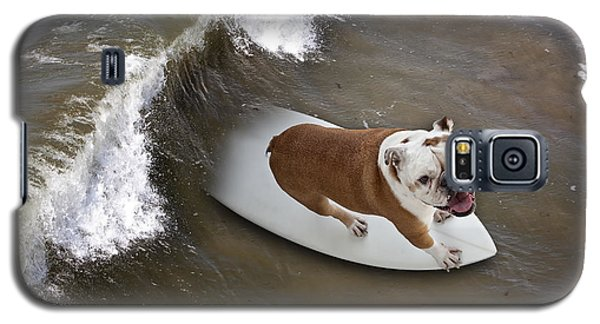 Surfer Dog Galaxy S5 Case by John A Rodriguez