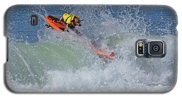 Galaxy S5 Case featuring the photograph Surfing Dog by Thanh Thuy Nguyen