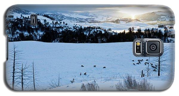 Surise Elk Herd Galaxy S5 Case