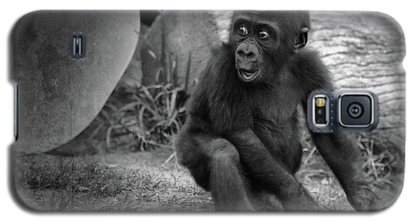 Gorilla Galaxy S5 Case - Surprise by Larry Marshall