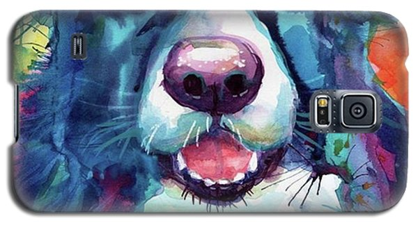 Colorful Galaxy S5 Case - Surprised Border Collie Watercolor by Svetlana Novikova