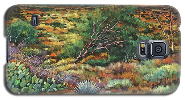 Phoenix Galaxy S5 Case - Surrounded By Sedona by Johnathan Harris