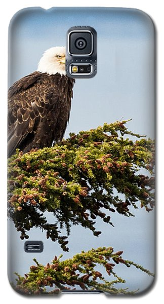 Surveying The Treeline Galaxy S5 Case