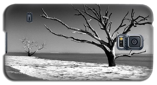 Galaxy S5 Case featuring the photograph Survivor by Dana DiPasquale