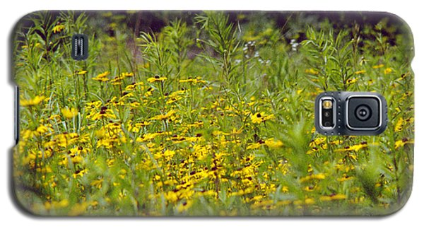 Susans In A Green Field Galaxy S5 Case
